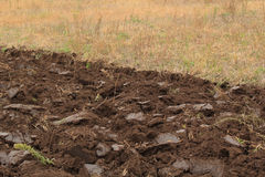 Fragment of the ploughed field Royalty Free Stock Image