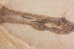 A fragment of plywood close up with knot. stock image