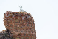A fragment of a ruined fortress wall Royalty Free Stock Photo