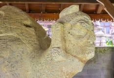 Fragment of Sarcophagus illustaring Head of Tortoise. BALI, INDONESIA - 19.01.2017: Fragment of Sarcophagus illustaring Head of Tortoise, Gedong Arca Stock Images