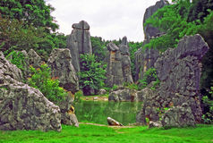 Fragment of shilin - stone forest - near Kunming in Yunnan provi Stock Photo