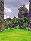 Fragment of shilin - stone forest - near Kunming in Yunnan provi Stock Images