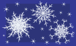 Fragment Snowflakes Royalty Free Stock Photos