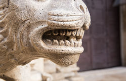 Fragment of lion  statue  Royalty Free Stock Image