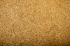 Fragment of the surface of fibrous synthetic non-woven material. Of brown color. Background, texture Stock Photos