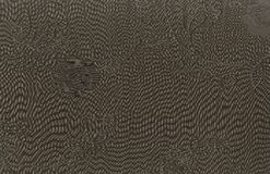 Fragment texture of silk fabric with an oversized patch pattern. Stock Image