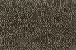 Fragment texture of silk fabric with an oversized patch pattern. Royalty Free Stock Image