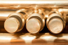 Fragment trumpet Stock Image