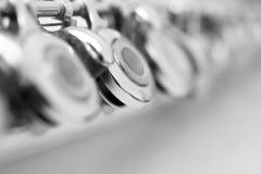 Fragment valves flute Stock Image