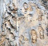 Fragment van de landweg stock afbeelding