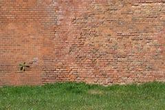 Fragment van een bakstenen muur van een oud kasteel, close-up stock fotografie