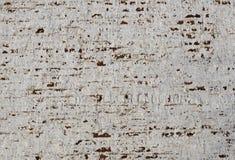 Fragment van een oude bakstenen muur stock afbeeldingen