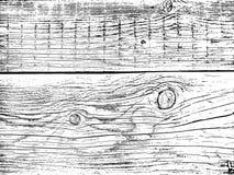 Fragment van een oude boom met een knoop vector illustratie