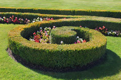 Fragment van formele tuin Stock Foto