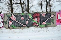 Fragment van gekleurde de graffitischilderijen van de straatkunst met contouren en dicht omhoog het in de schaduw stellen stock foto's