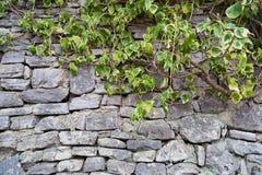 Fragment van oude grijze die steenmuur van verschillende vorm wordt gemaakt en siz royalty-vrije stock fotografie