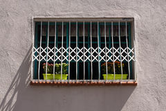 Fragment of vintage wall with grating window and potted flowers. Tel Aviv, Israel. Royalty Free Stock Images