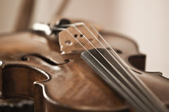 Fragment of violin royalty free stock image