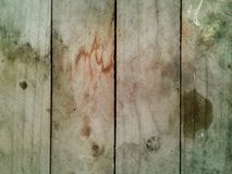 Fragment of a wooden panel hardwood Texture Background Royalty Free Stock Image