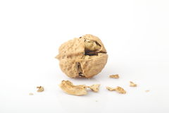 The fragmentation of the walnut. The white background of walnut Stock Images