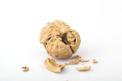 The fragmentation of the walnut. The white background of walnut Royalty Free Stock Images