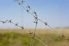 Fragmenten van prikkeldraad tegen de achtergrond van groen gras Royalty-vrije Stock Fotografie