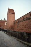 Fragmentet av den historiska väggen av Riga Royaltyfri Fotografi