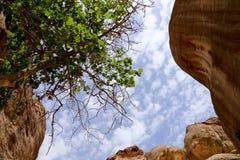 Fragmentet av vaggar i 1en 2km lång bana (som-Siq) i staden av Petra, Jordanien Royaltyfria Bilder