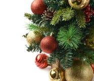 Fragmento da árvore de Natal do close-up isolado Imagem de Stock