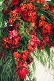 Fragmento da decoração floral do arco do casamento Fotografia de Stock Royalty Free