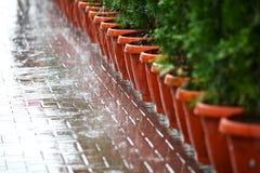 Fragmento da estrada da chuva Fotografia de Stock