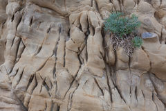 Fragmento da pedra ou da rocha velha Foto de Stock