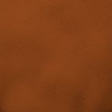 Fragmento de couro da textura Fotos de Stock Royalty Free