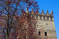 Fragmento de la fachada del castillo Foto de archivo
