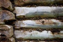 Fragmento de la pared vieja de la casa de la madera Fotografía de archivo libre de regalías