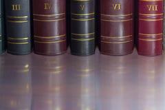 Fragmento de las espinas dorsales del libro de los tomos viejos del cuero-límite imagen de archivo