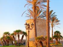 Fragmento de paredes y de palmeras defensivas en Alghero Cerdeña, Italia Fotos de archivo