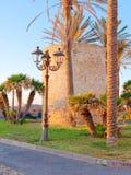 Fragmento de paredes y de palmeras defensivas en Alghero Cerdeña, Italia Foto de archivo libre de regalías