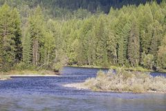 Fragmento de um rio da montanha. Fotografia de Stock Royalty Free