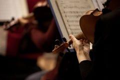 Fragmento de um violino nas mãos de um músico fotos de stock