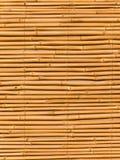 Fragmento de un interior de un bambú Fotografía de archivo