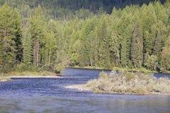 Fragmento de un río de la montaña. Fotografía de archivo libre de regalías