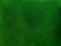 Fragmento del viejo fondo del cuero del verde del vintage Imagen de archivo libre de regalías