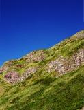 Fragmento do penhascos irlandeses do norte cobertos de vegetação com a grama Foto de Stock Royalty Free