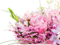 Fragmento do ramalhete colorido das rosas isoladas Imagens de Stock