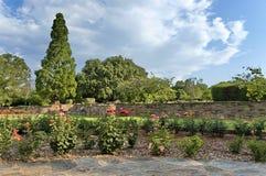 Fragmento do rosarium no jardim botânico fotografia de stock