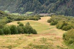Fragmento do terreno montanhoso nos Carpathians, Ucrânia A floresta é perdoada pelos relevos das montanhas Carpathian foto de stock