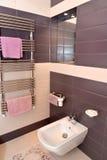 Fragmento interior do banheiro com o equipamento sanitário Fotografia de Stock