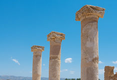 Fragments of ancient columns Stock Images