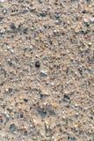 Fragments de coquilles de mer sur le sable images libres de droits